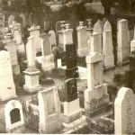 Cmentarz żydowski - Dzierżoniów